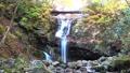 秋天的山谷(福岛县,日本松市)的秋天 50329958