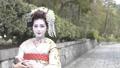 舞妓さんのポートレート 50335908