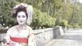 舞妓さんのポートレート 50344068