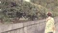 歩く舞妓さんの後ろ姿 京都観光イメージ 50344070