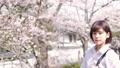 桜と女性のポートレート 50344071