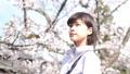 桜と女性のポートレート 50344072