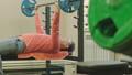 スポーツジム こしかけ ベンチの動画 50399726
