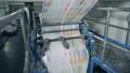 頁 報紙 紙 50429718