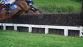 Horses Jump Over Fence At Race Course 50444215