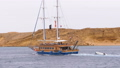 Beautiful Wooden Yacht with Tourists is Sailing in the Stormy Sea on the background of Rocks. Egypt 50445570