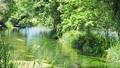 エコロジーイメージ 50458621