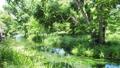 長野県 エコロジーイメージ 50458622
