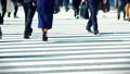 出勤、ビジネスマン、ビジネス、歩く、足元、革靴、靴、脚、足、ハイヒール、男性、女性、ビジネスウーマン 50579046