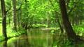 綠化To小牧北海道的流動 50604086