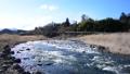 白石川 流れ 水 河原 水資源 50615845