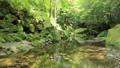新緑の耶馬溪 50656302