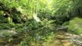 新緑の耶馬溪(音あり) 50656303