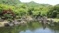 新緑の渓石園(音あり) 50656308