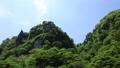 新緑の耶馬溪(一見八景・pan) 50656309