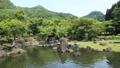 新緑の渓石園(pan) 50656310