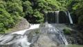 新緑の竜門の滝(音あり)2 50656316