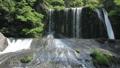 新緑の竜門の滝(音あり)1 50656317