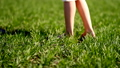 A girl is standing barefoot on a green meadow with lush green grass on a summer day. Body parts 50667121