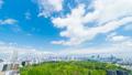 東京風景timelapse市長綠葉和藍天俯瞰市中心東京從Skytree到國家體育場FIX 50767929