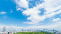 東京景觀遊戲中時光倒流市長綠化和藍天俯瞰市中心東京從Skytree到國家體育場傾斜 50767931