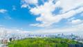 東京風景Timelapse市長綠葉和藍天全景街市東京從Skytree到國家體育場 50767932