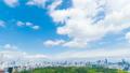 東京風光遊戲中時光倒流市長綠化和藍天東京市中心從Skytree到國家體育場的全景 50767934
