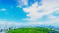 東京景觀遊戲中時光倒流市長綠化和藍天俯瞰市中心東京從Skytree到國家體育場卡拉格雷 50767936