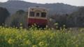 春天的小船路 50799024