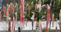 宮城県白石市の材木岩公園で鯉のぼりを空撮しました (無風) 50808200