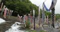 宮城県白石市の材木岩公園で鯉のぼりを空撮しました (無風) 50808203