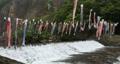 宮城県白石市の材木岩公園で鯉のぼりを空撮しました (無風) 50808205