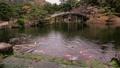日本庭園の木でできたアーチ状の橋が有名な香川県の栗林公園 50826674