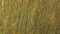 バック用石材 横パンニング 50892612