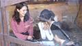 カフェ レストラン 女性の動画 50957474