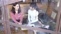 カフェ レストラン 女性の動画 50957475