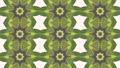 Abstract animated kaleidoscope motion background. 51343617