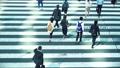 Attendance, businessman, business, salaried worker, morning, rush, commuting, walking, crosswalk, intersection, men, suit 51671655