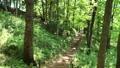 里山の風景 52963452