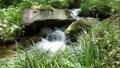 川 水 せせらぎ 石 流れ 不動尊公園 52970792