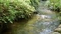 แม่น้ำหิน serger ไหลของน้ำสวน fudoson 52970795