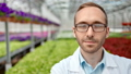 Portrait of positive man agriculture engineer in glasses and uniform posing at greenhouse 52983685