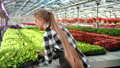 Young professional female farmer putting box with seedling plant working at greenhouse 52985242