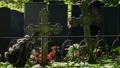 wreaths on iron grave crosses 53106984