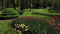 Beautiful flowerbed with flowers in the city park. 53144604