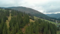 Power line in the forest with many coniferous trees in the mountains in cloudy weather 53357488