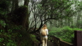 Blonde Caucasian Female Foreign Tourist Visit Alishan Scenic Area Walking Through Forest with Mist 53636417
