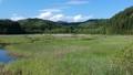 空撮 美しい沼地 湿原 湿地 53724931
