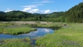 空撮 美しい沼地 湿原 湿地 53724932