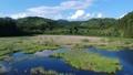 空撮 美しい沼地 湿原 湿地 53724933